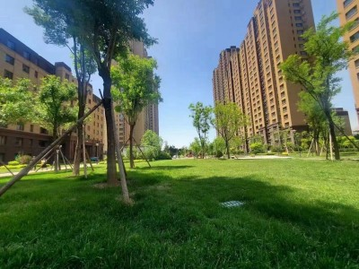 碧桂园时代城在售价格23000元/m²!精装现房,拎包入住,